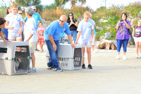 Marine science center releases 3 rehab pelicans in Ponce Inlet